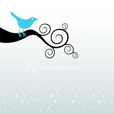 http://store.zcubes.com/11ECC40A0FF743868220689E7F173C1A/Uploaded/ist2_2437874_one_credit_blue_bird.jpg