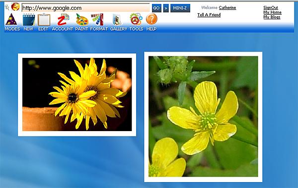 http://store.zcubes.com/35E61832E0574D0F9007B2C89F0CC7D6/Uploaded/SaveExp1.jpg