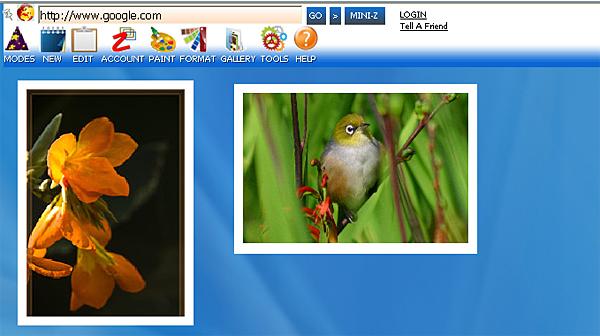 http://store.zcubes.com/35E61832E0574D0F9007B2C89F0CC7D6/Uploaded/Undo1.jpg