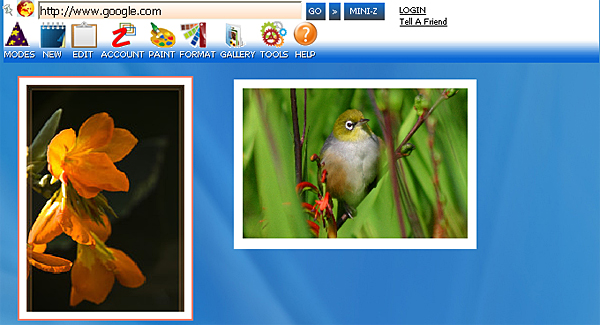 http://store.zcubes.com/35E61832E0574D0F9007B2C89F0CC7D6/Uploaded/Undo3.jpg