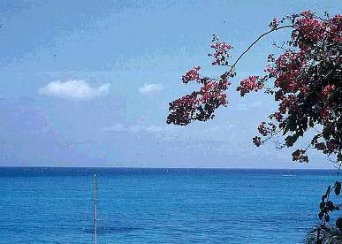 http://store.zcubes.com/466A6CC3E51E423DA07CA97D3AAC8170/Uploaded/jamaica.jpg