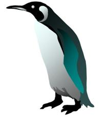 http://store.zcubes.com/63EBFF2F4177498EB123D80B0011A1E9/Uploaded/penguinsmall.JPG