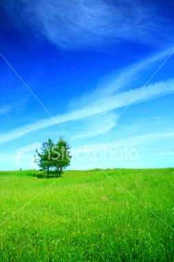 http://store.zcubes.com/7F1386DF18D14A0CAAFA54C4E278106D/Uploaded/ist2_3599632_landscape.jpg