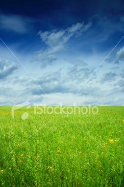 http://store.zcubes.com/7F1386DF18D14A0CAAFA54C4E278106D/Uploaded/ist2_3749622_summer_landscape.jpg
