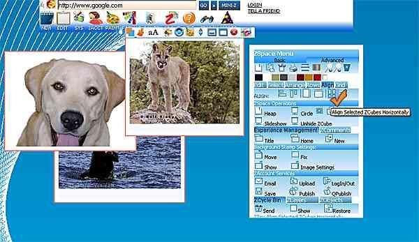 http://store.zcubes.com/B0ECE75E8841494EBED051E93A147C7C/Uploaded/AlignHorizontal2.jpg