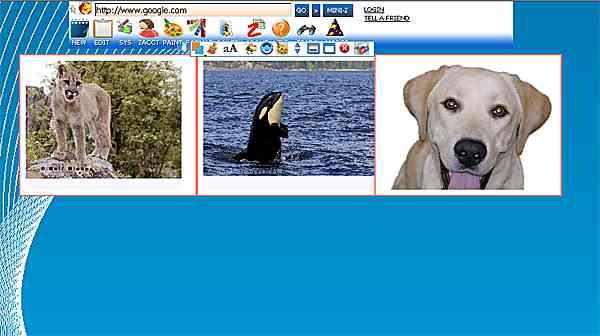 http://store.zcubes.com/B0ECE75E8841494EBED051E93A147C7C/Uploaded/AlignHorizontal3.jpg