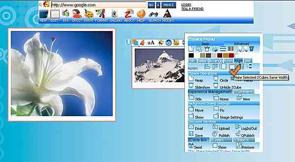 http://store.zcubes.com/B0ECE75E8841494EBED051E93A147C7C/Uploaded/AlignWidth1.jpg