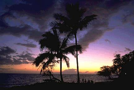 http://store.zcubes.com/F794E6E5F28249E4B27F2812F65F236D/Uploaded/hawaii3.jpg
