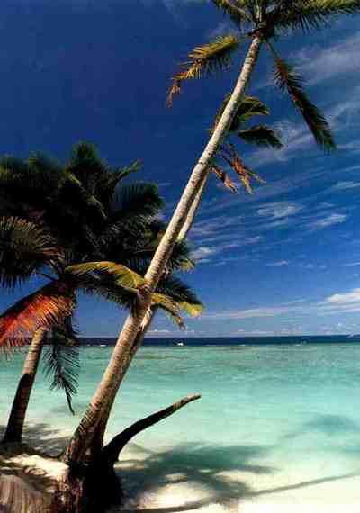 http://store.zcubes.com/F794E6E5F28249E4B27F2812F65F236D/Uploaded/maldive.jpg