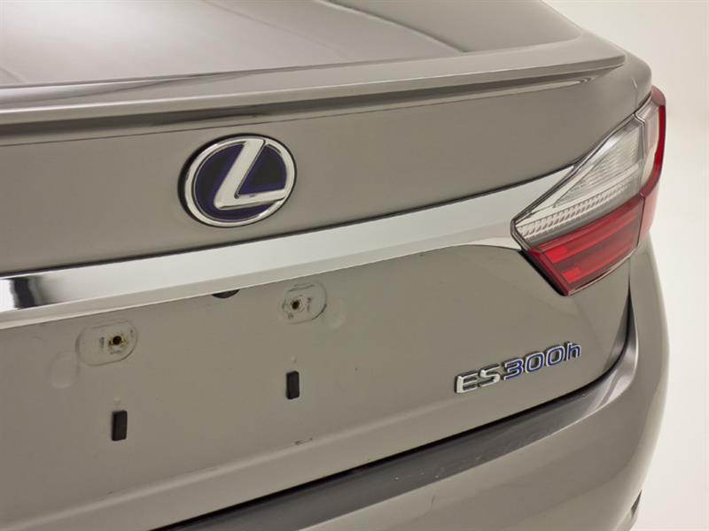 Lexus ES 300h 10