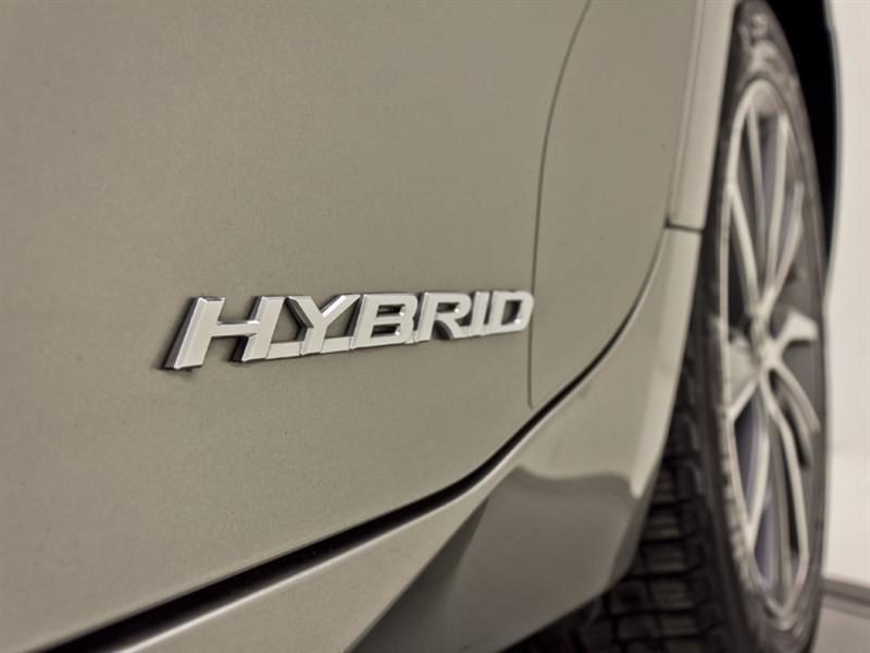 Lexus ES 300h 15