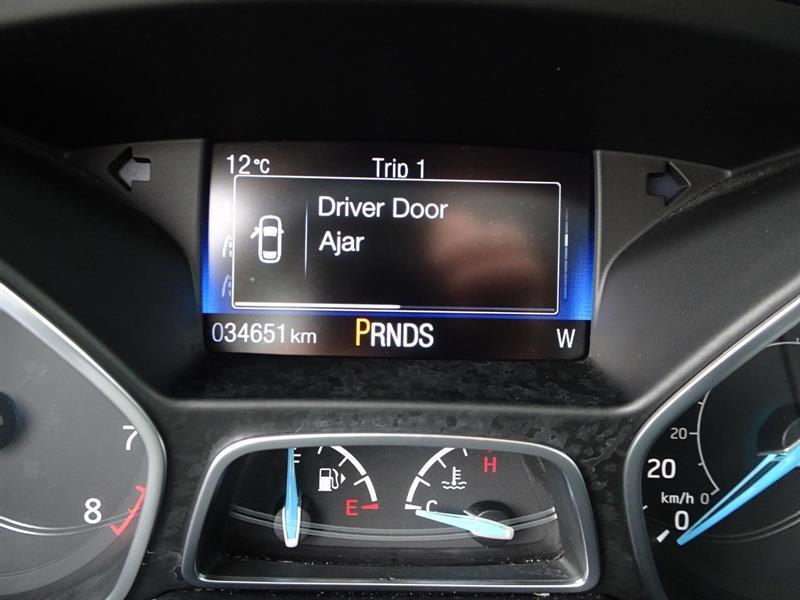 Ford Focus Hatchback 25