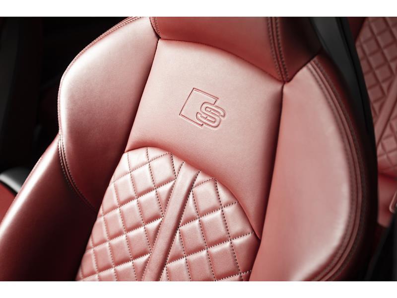 Audi S5 29