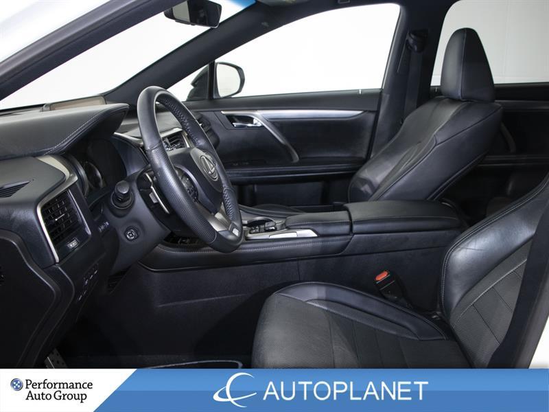 Lexus RX 350 19