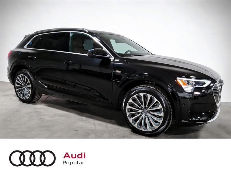 Audi e-tron Technik quattro 2019