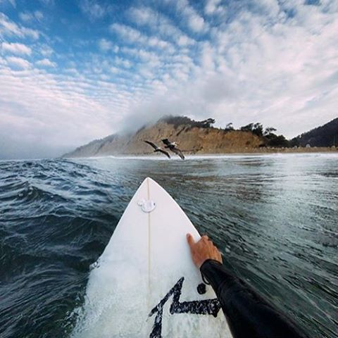Great shot from @abekislevitz of @gopro setting his weekend in motion!