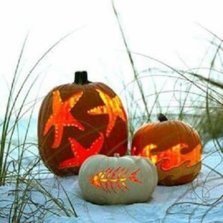 our kind of FALLiday decorating #inspo #halloween #seaolantern #beach #seekthesea #luvsurf #holiday #fall