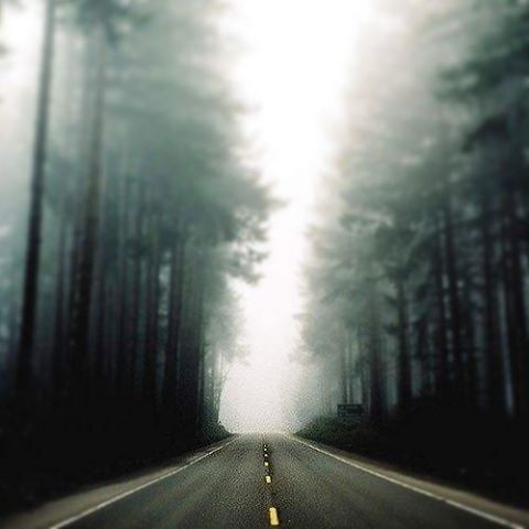 Salí a andarxanfar entre la niebla de esta primavera atrasada!  www.wikasport.com #deportesextremos #extremotivation #deporte #deporteextremo #argentina #argentinaig #argentinaingram #argentina2015 #argentinaa #buenosaires #buenosairescity...