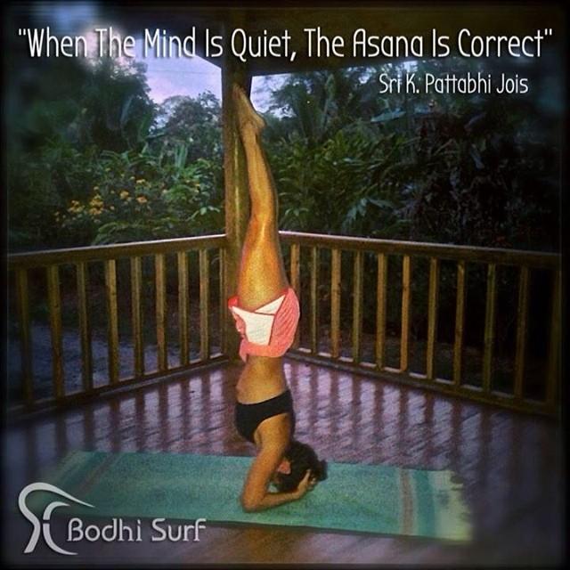 #yoga #yogawisdom #yogaquotes #asana #quietmind #headstand #bodhiyoga #bodhisurf