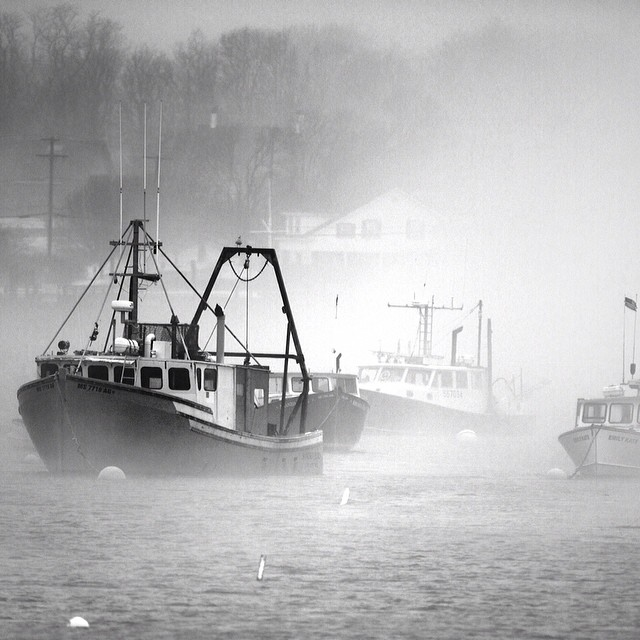 #scituate #harbor #fog #coldasf #coldwatersurf #winter #instagood #photooftheday #like #picoftheday #instadaily #ig #instasurf #webstagram #bestoftheday #love #follow #igdaily #newengland #eastcoastsurf #eastcoast #surf #surfing #wave #water #surfphoto...