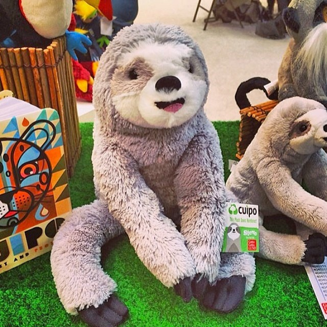 Happy Oscar sloth sunday everyone. Be on the lookout for our Steve the sloth stuffed animal coming out soon. #cuipo #saverainforest #slothsunday #sloth