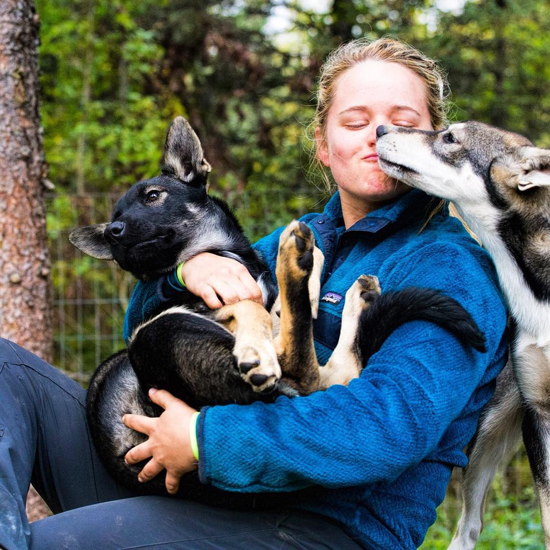 Play time in Willow, Alaska.  Microplastics adventurer Emmy Luenemann takes time to unwind with some sled dog puppies after her trek through #Denali. #itsfriday  Photo by Brian Luenemann.