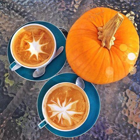 Halloween morning calls for Pumpkin Spice Lattes