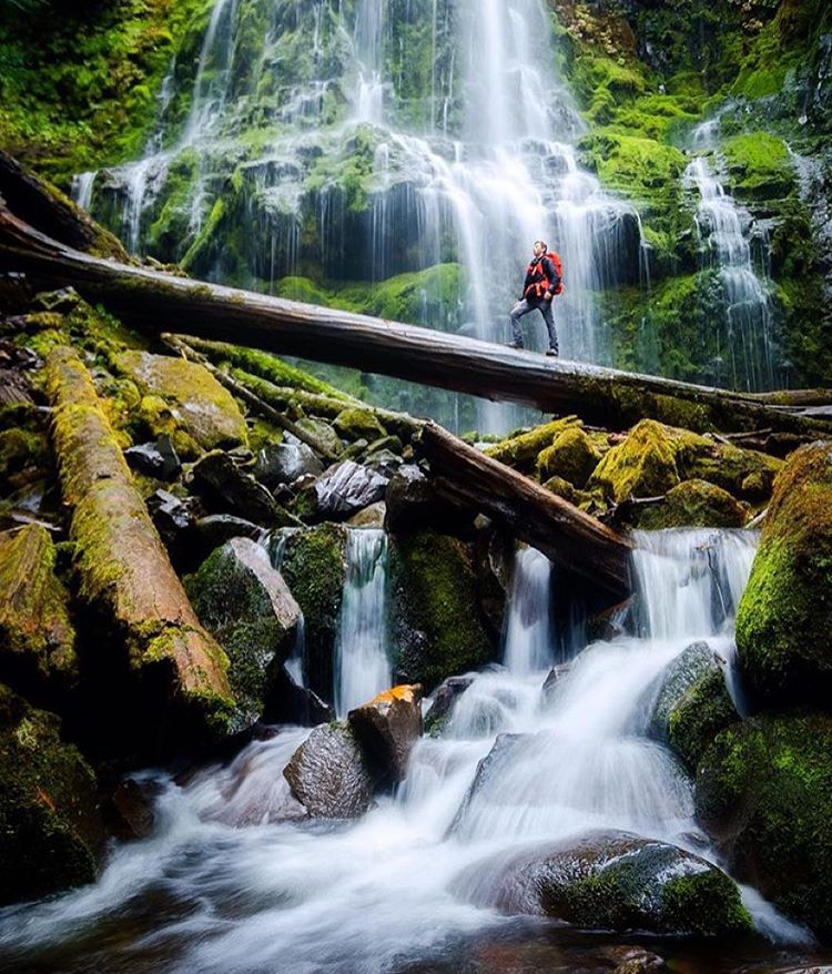 Proxy Falls in Oregon hosts @taylorgrayphoto on a recent trip. Hope you stayed dry! #getoutthere #adventureworthy