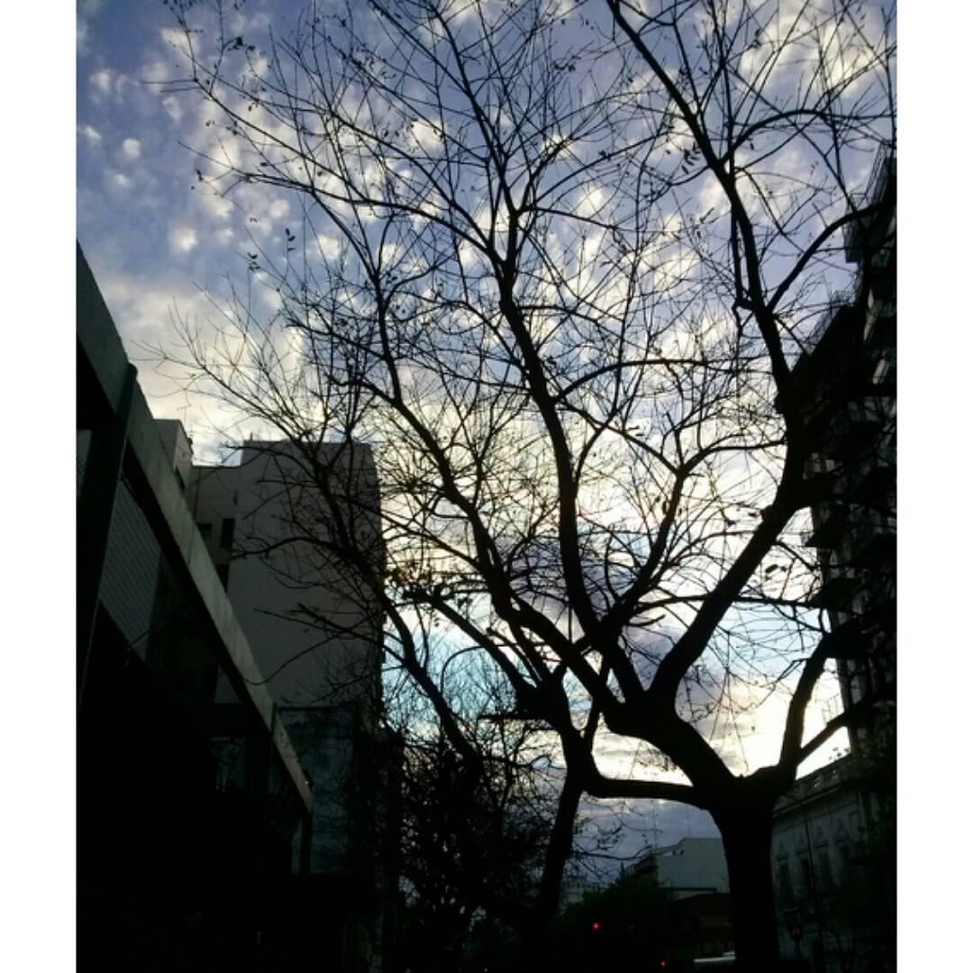 Por este cielazo no le pedí foto al famoso que paso caminando. #ph #buenosaires #cielo #magic #sky #sunset #tramonto #atardecer #cielosdebuenosaires