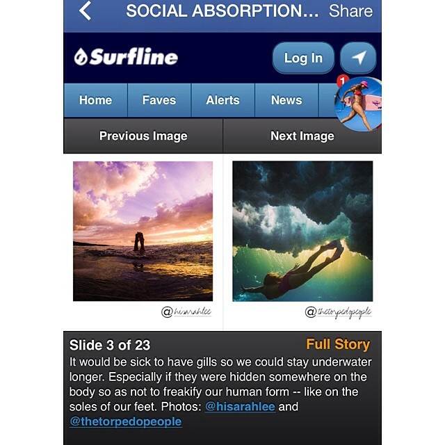 Gills in the soles your feet. Interesting. @surfline @alisonsadventures #socialabsorption