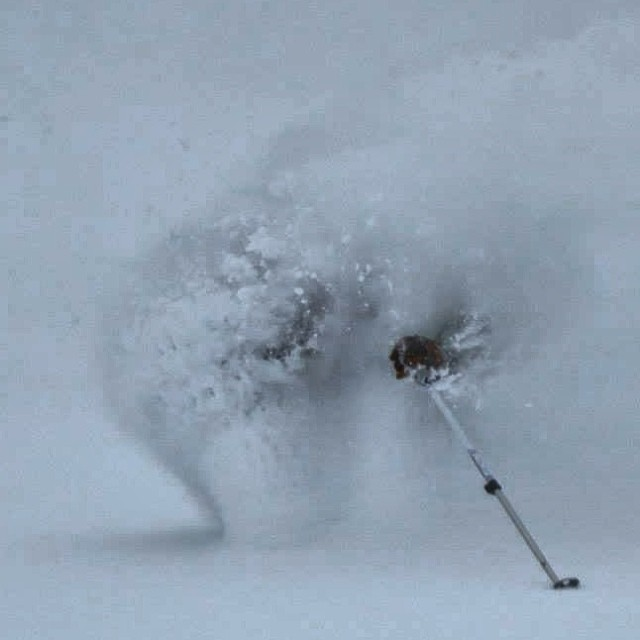Thanks to @bigredcats for a deep day today. Skier: @sethdee
