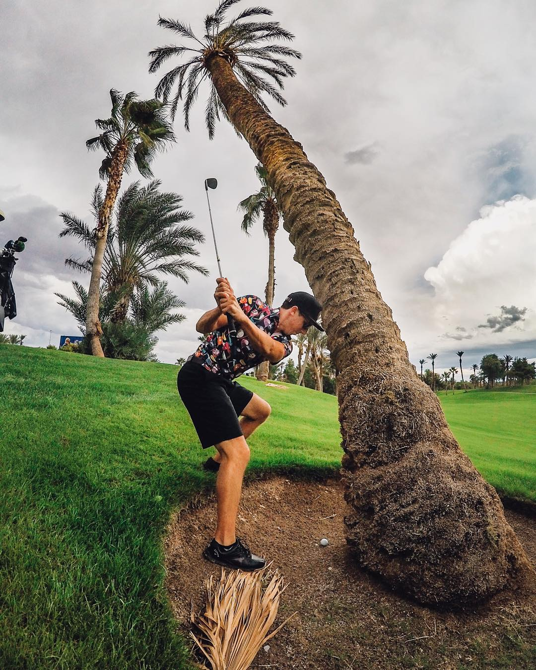 Photo of the Day! @ajvoelpel goes around the palm tree and into the cup for par at @BaliHalGC. #