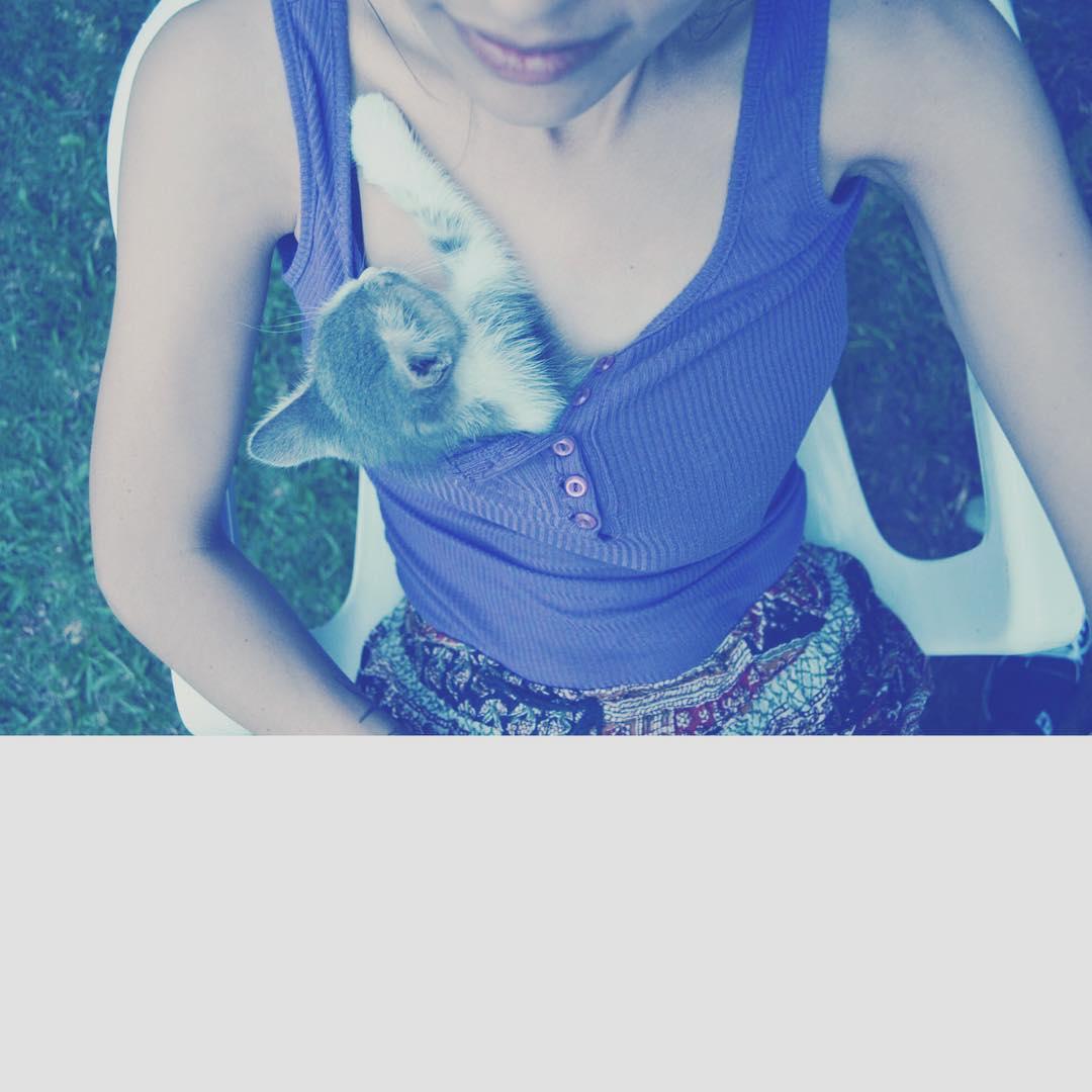 A 2 años de Soda en mi ❤️ #cat #lovecat #meow #gata #amorgatuno #purrrr #cats
