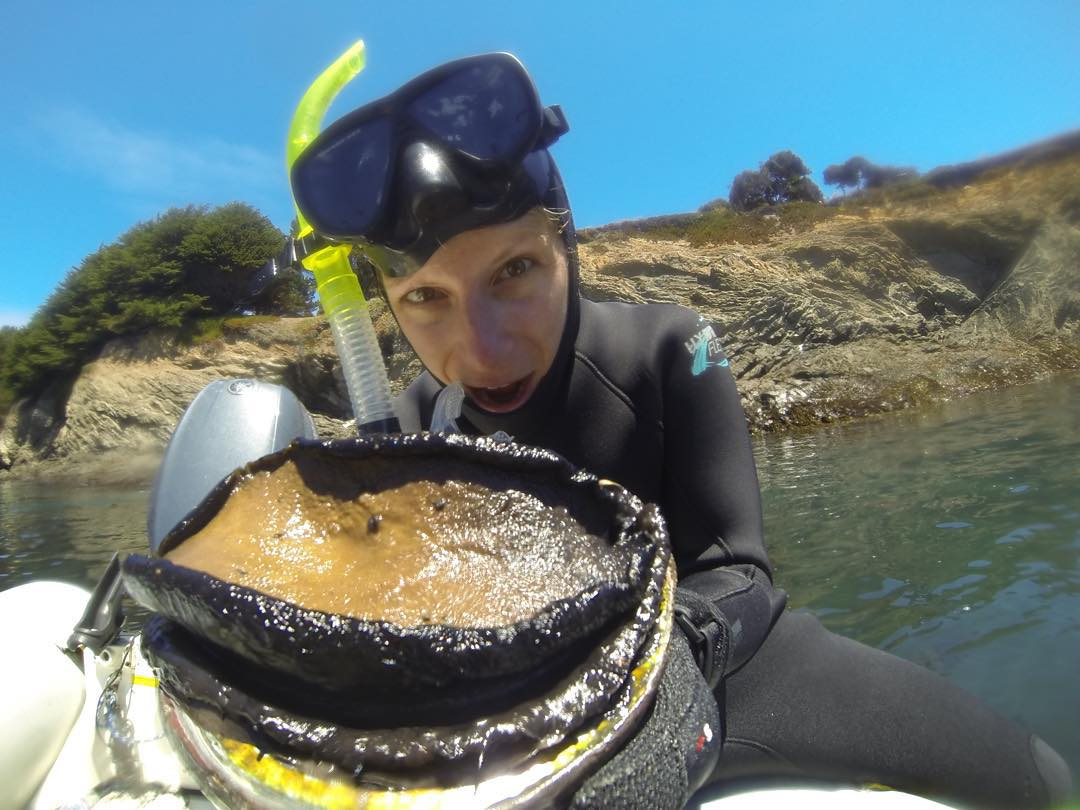 Dinner is served #flashbackfriday #mendocino #abalonediving #abalone #exploremore #gopro