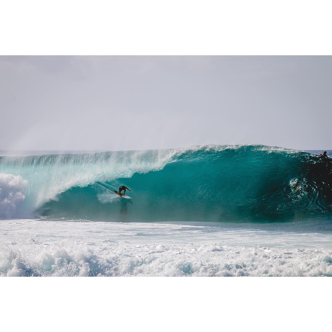 It's that time of year again! Early season pipe awakens and @happyreef76 is there to greet it with open arms.