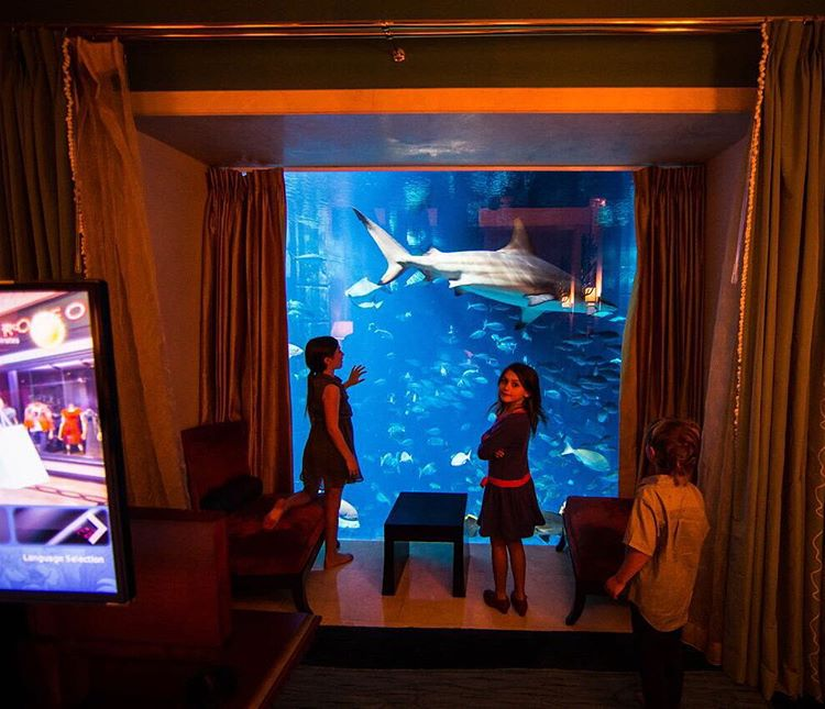 How crazy is this giant see-thru glass wall in our master suite bedroom of the Atlantis hotel here in Dubai??? This definitely the craziest room feature of any hotel room I have ever slept in. Over 65,000 fish swimming by our room in the hotel's giant...