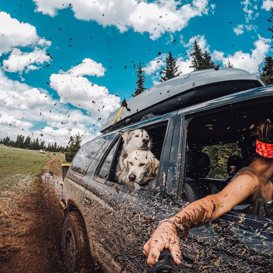 @loki_the_wolfdog loves driving with the windows down and hanging with his best buds, even while off-roading through the mud in the Aquarius Plateau in Utah. I decided early on that I would do everything I can to bring Loki on all of my adventures. At...