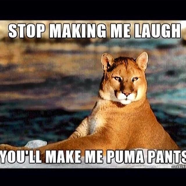 Puma pants...lol. #cuipo #saverainforest