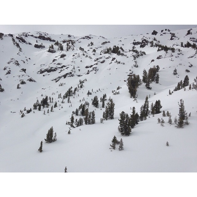 This is an unreal zone just found in California. No tracks and the snow was great ! Anyone know where this is? #forridersbyriders #handmadelaketahoe  #illnevertell