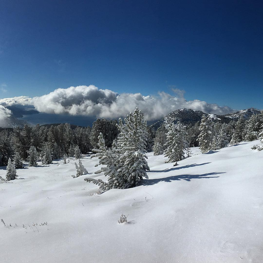 #mtrose #backcountry #laketahoe #freshsnow