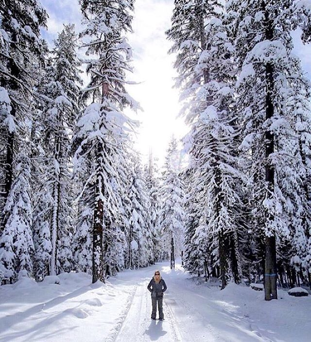 Winter whites and black pearls  @hannahbrie wearing the Black Pearl shades  #Kameleonz #Snow #WinterWonderland #Forest