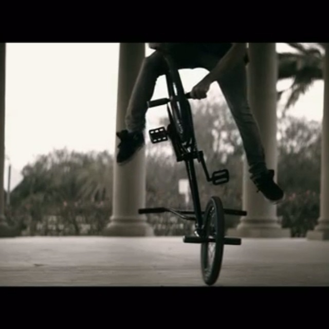 @TerryAdamsBMX just doing his thing. #givesyouwings