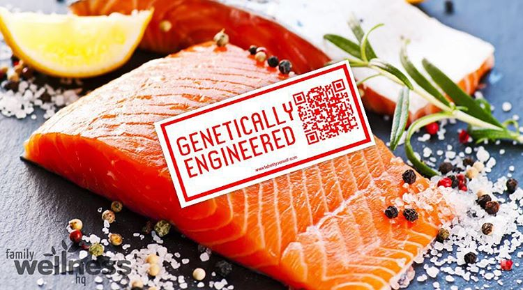 Yesterday the FDA approved genetically engineered Atlantic salmon from AquaBounty Technologies to be safe for human consumption. With plans to be available in the next 2 years, this is the first animal with genetically modified DNA to be sold for food...