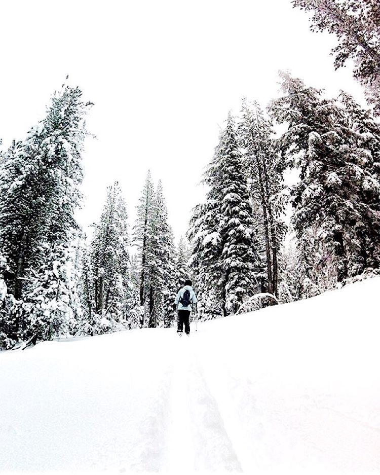The smell of fresh pine  @hannahbrie wearing the Heather Charcoal beanie  #Kameleonz #Snow #BeanieSeason #FreshPow