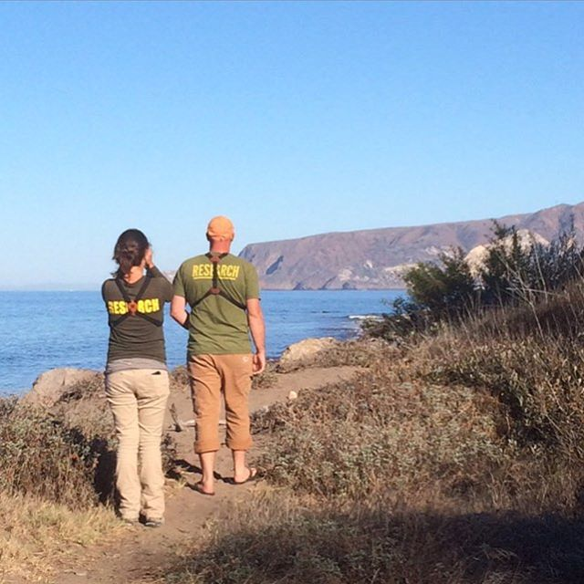 CHANNEL ISLANDS RESEARCH In addition to supplying awesome goods to folks like you, we also supply teams like Channel Islands Restoration as part of our effort to support park non-profits. #dreamjob #radparks #leaveitbetterthanyoufoundit...