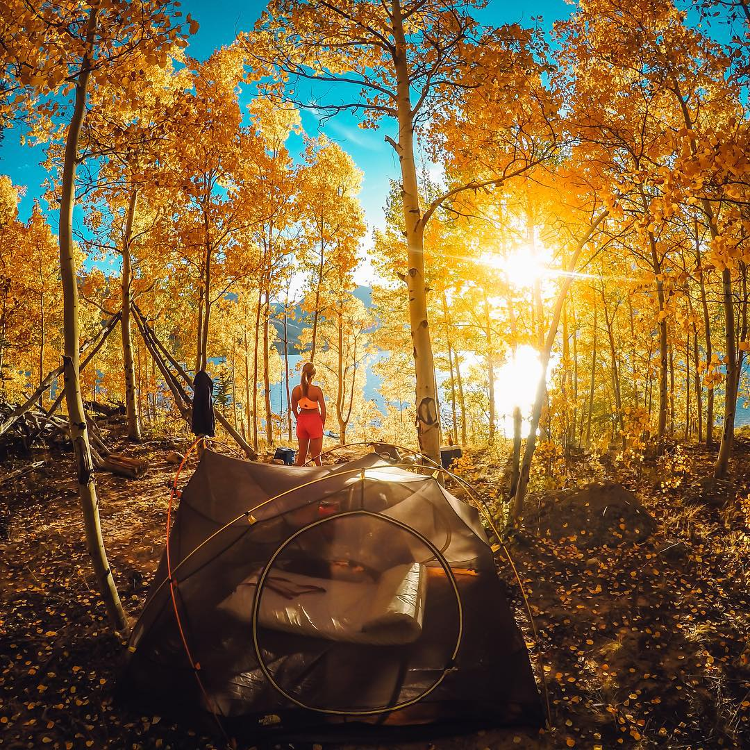 Photo of the Day! Getting to @lanerjohnson's secret camping spot near Aspen, Colorado is the hard part, enjoying the Autumn air is the easy one. What's your favorite campsite? Share it with us by following the link in our profile. #GoPro #GoProGirl...