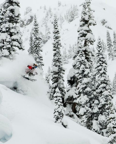 This trip wasn't exactly bottomless but it was pretty dang high on the powder meter. Nonetheless, even with the widest reverse camber skis and being the smaller guy on the team @eric_hjorleifson still managed to get more faceshots on the Renegades than...