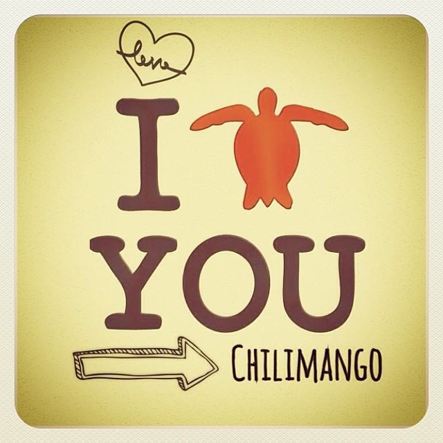 #RookieApp #chilimango #loveistodo #love #megusta #like #surfgifl #girl #stylesurf #stylelife #surfsing