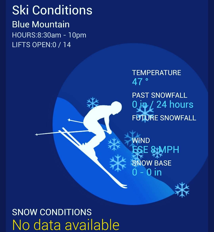 NO!  #ski #skiseason #skis #skirack #snow #winter #mountains #bamboo #grassracks
