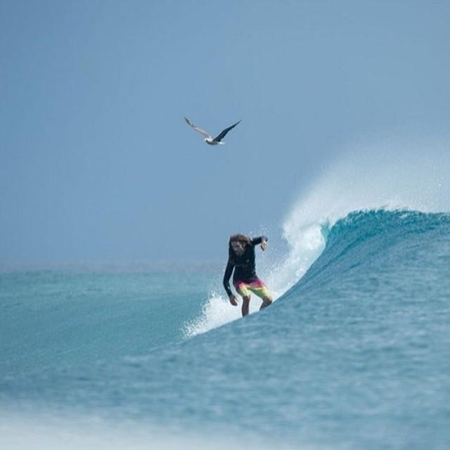 No hace falta más que volar.- #soul #surfing #waves #reefargentina